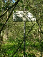 Stadtwald Furthwiki
